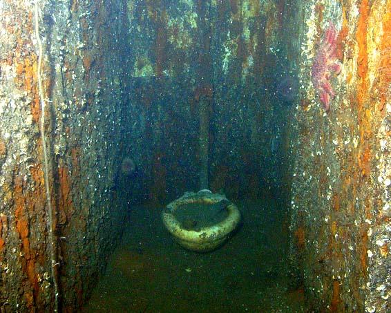 Inside titanic underwater bodies - bing images.
